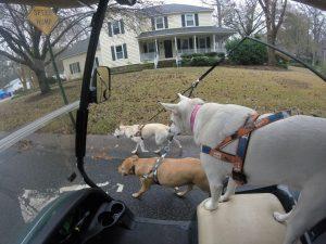 Golf Cart Accessories Ocala