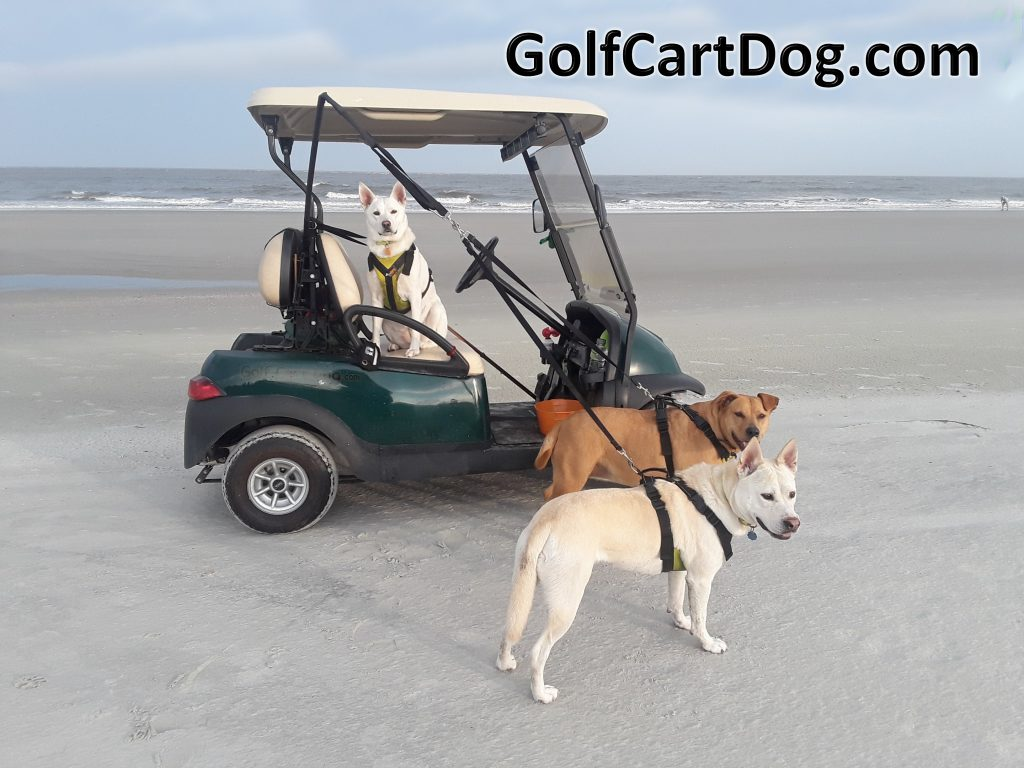 K9 Safety Systems for golf carts